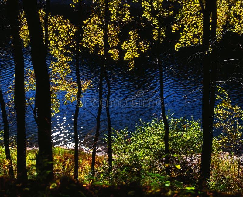 Armonia di colore di autunno fotografia stock libera da diritti