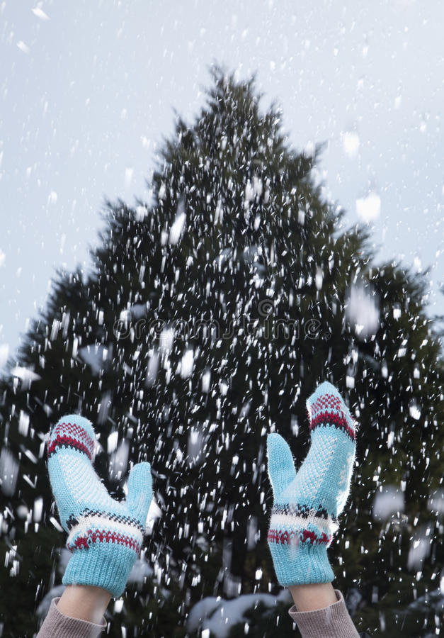 Arms Raised In A Snowy Day Stock Image