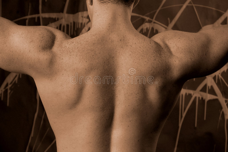 Download Arms up stock photo. Image of body, massage, spine, vascular - 485614