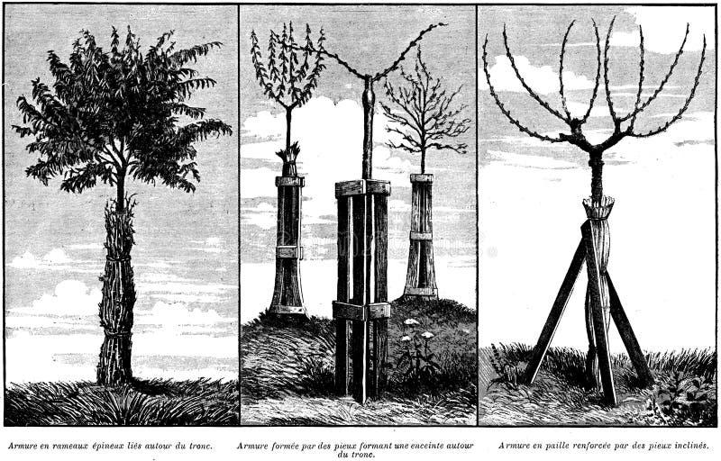 Armures-oa Free Public Domain Cc0 Image