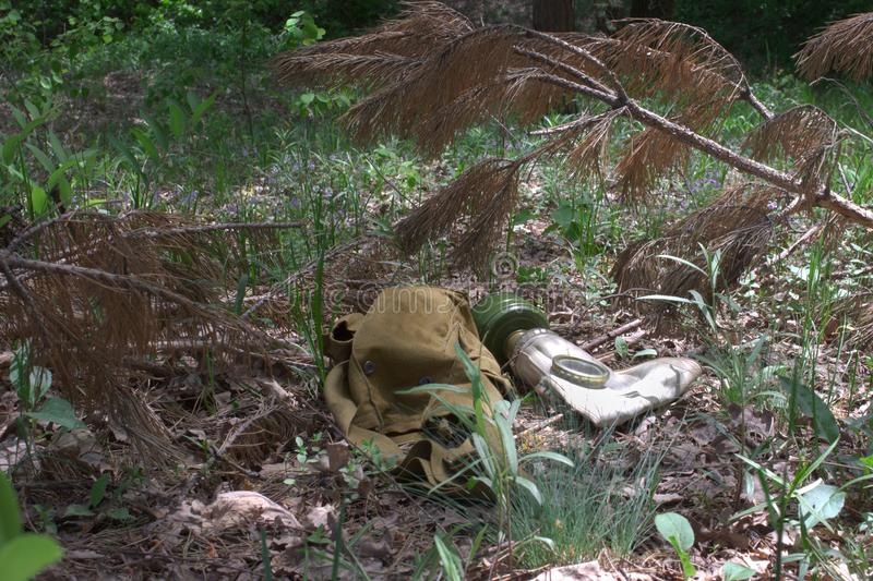 Army gas mask without hose and rag bag under a withered pine bra. Army gas mask without hose and rag bag under a dry pine branch stock image