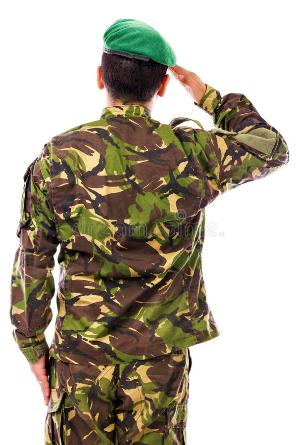 Army soldier saluting. Isolated on white background.Back view royalty free stock photography