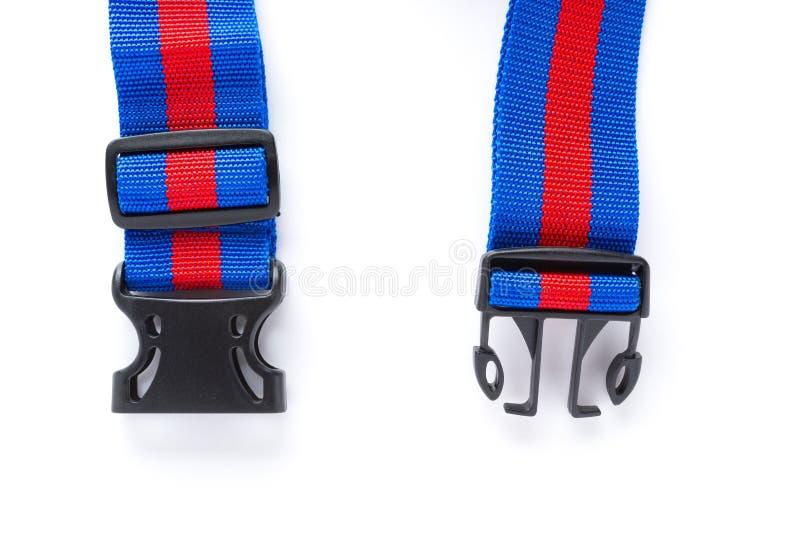 Arnés azul y rojo con las hebillas negras en el bckground blanco fotos de archivo