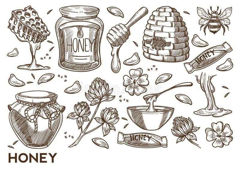 Arnia degli oggetti di apicoltura di produzione del miele ed agricoltura di apicoltura illustrazione di stock