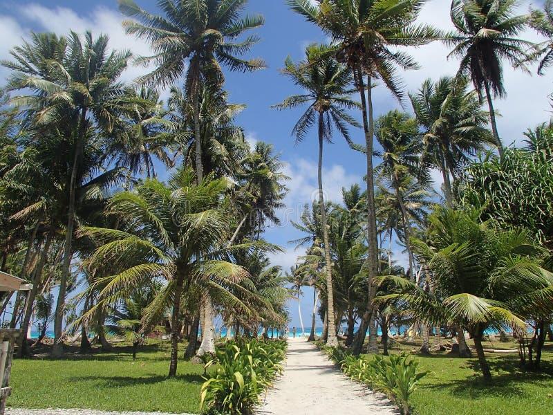 Arno atoll royaltyfria foton