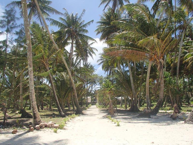 Arno atoll stock image