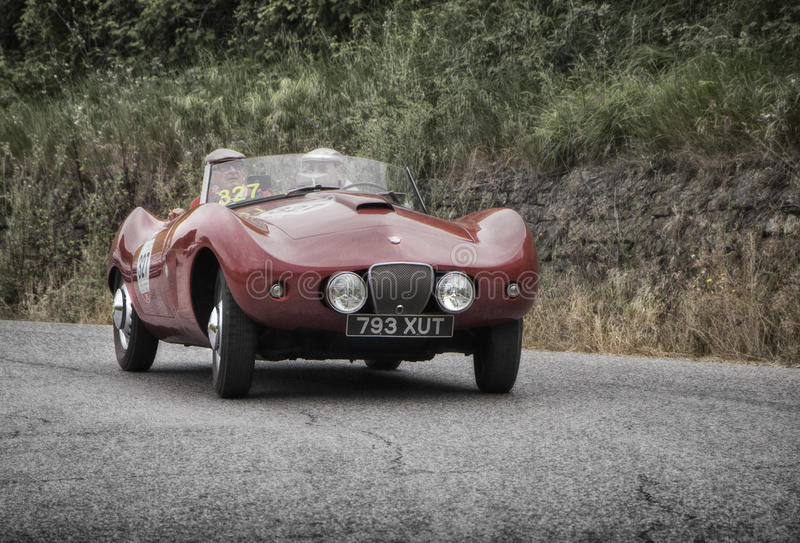 ARNOLT Bristol Bolide 1954 photos stock