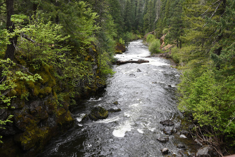 Arogancka rzeka w południowo-zachodni Oregon obraz royalty free