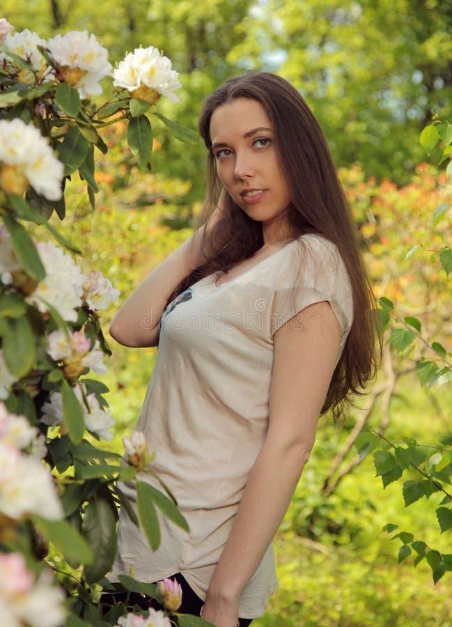 Aroma Royalty Free Stock Photos