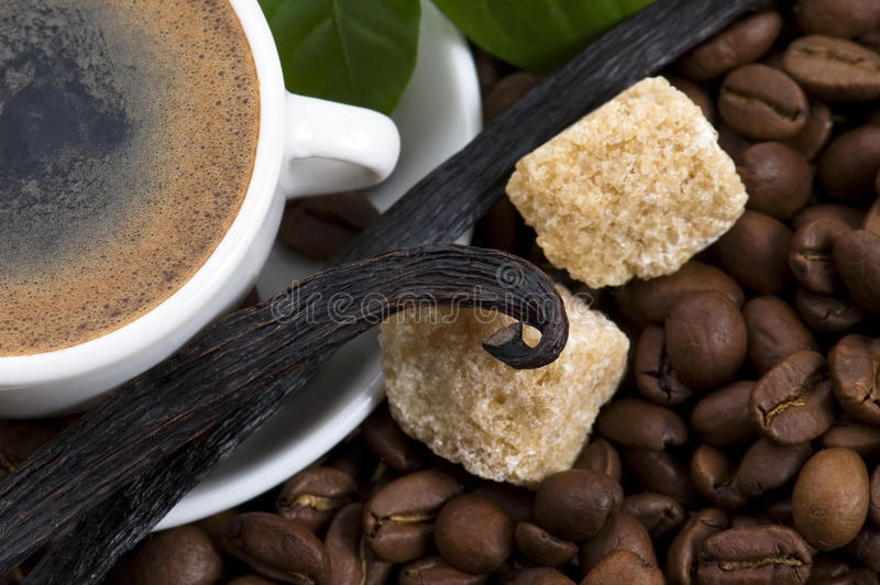 Aroma coffee with vanilla and coffee branch stock photography