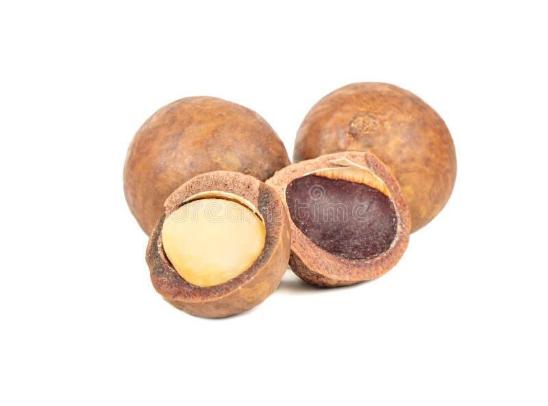 Aroma de macadamia dividida imagen de archivo