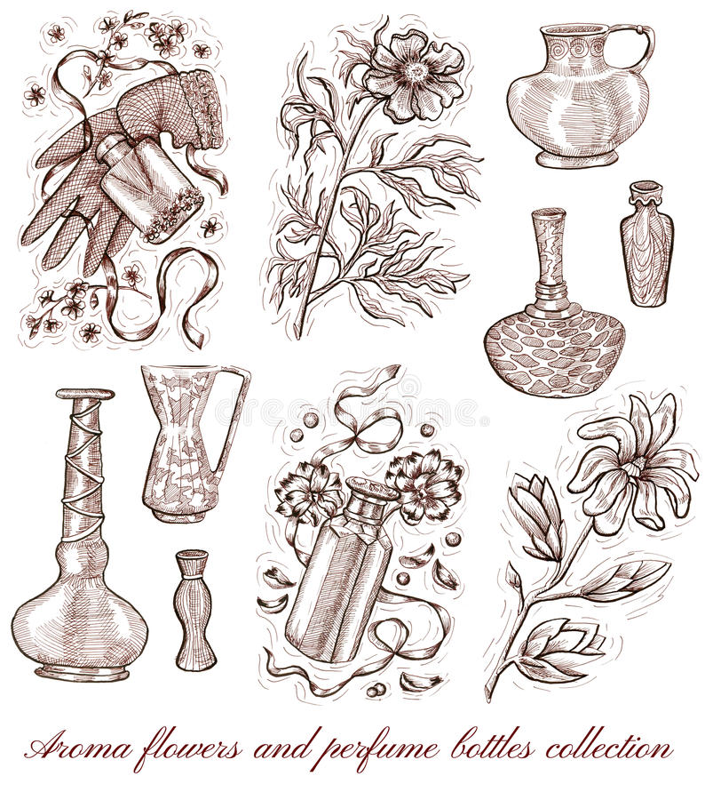 Aroma flowers and perfume bottles collection isolated on white. Hand drawn engraved illustration of peony, magnolia, patchouli and lavender. Natural cosmetics vector illustration