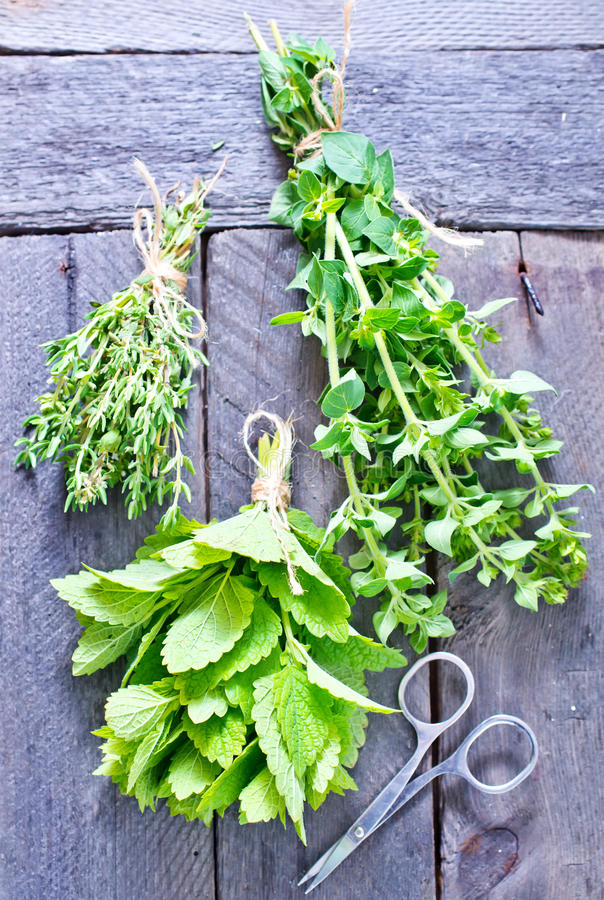 Aroma herbs. Fresh aroma herbs on the wooden table royalty free stock photography