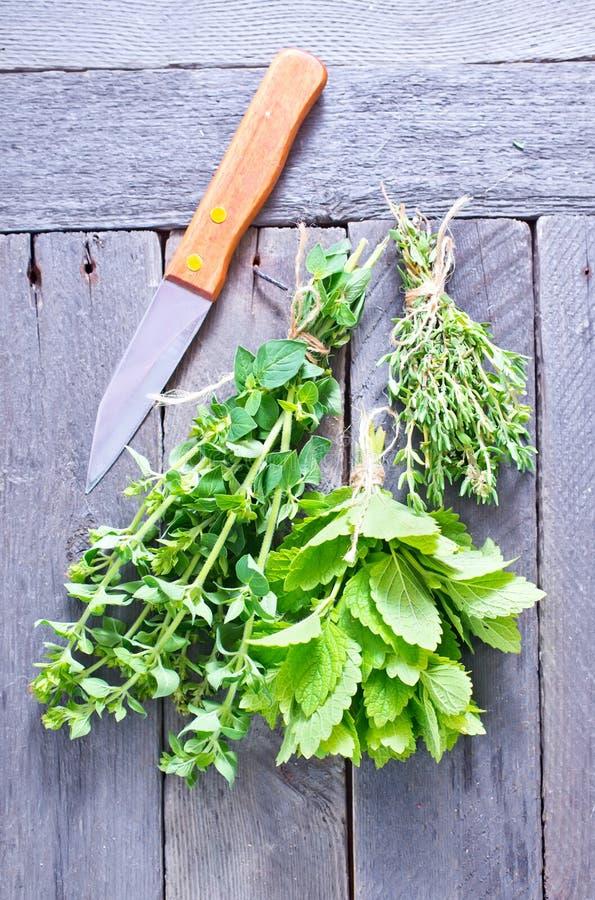 Aroma herbs. Fresh aroma herbs on the wooden table stock photo