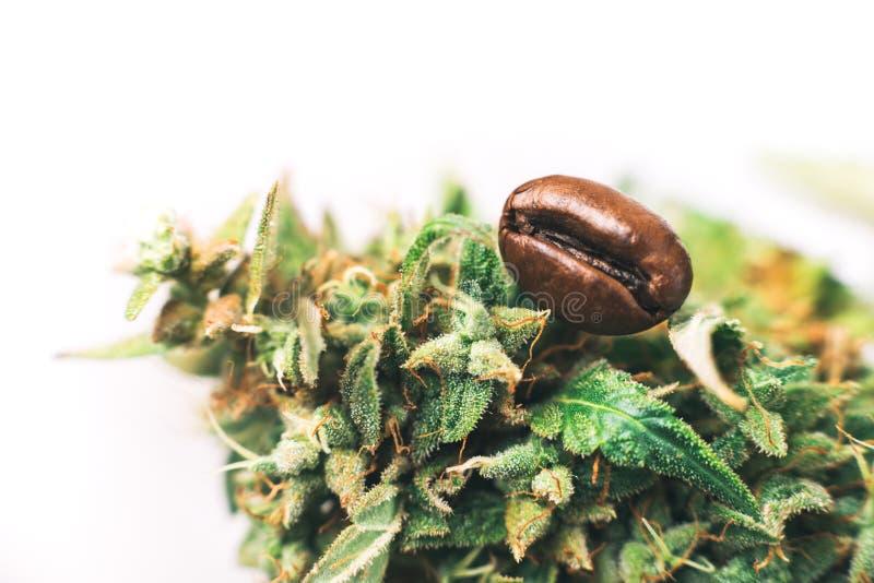 Aroma van koffie en cannabisknop royalty-vrije stock afbeeldingen