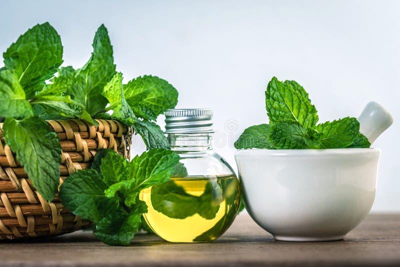 Aromata istotny olej od miętówki w butelce na stole obrazy stock