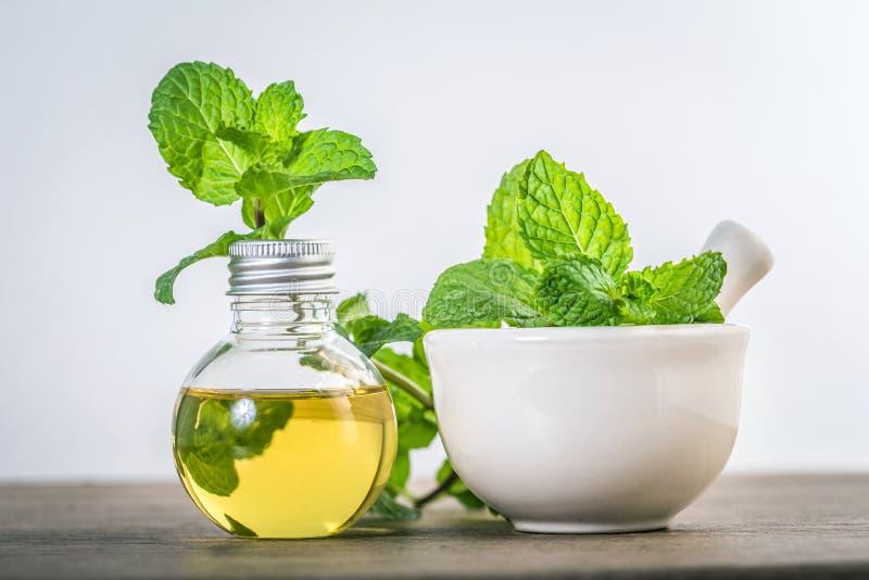 Aromata istotny olej od miętówki w butelce na stole fotografia stock