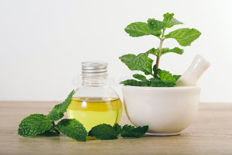 Aromata istotny olej od miętówki w butelce na stole obrazy royalty free