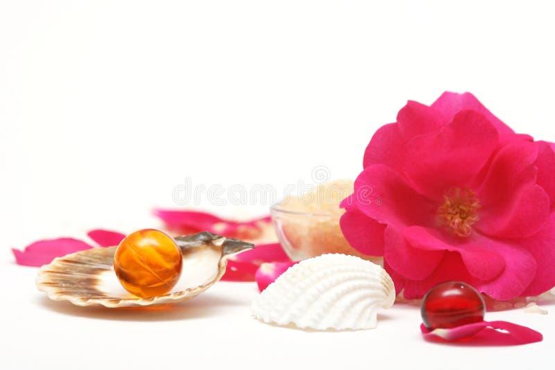 Aromaterapia de Rosa fotos de stock royalty free