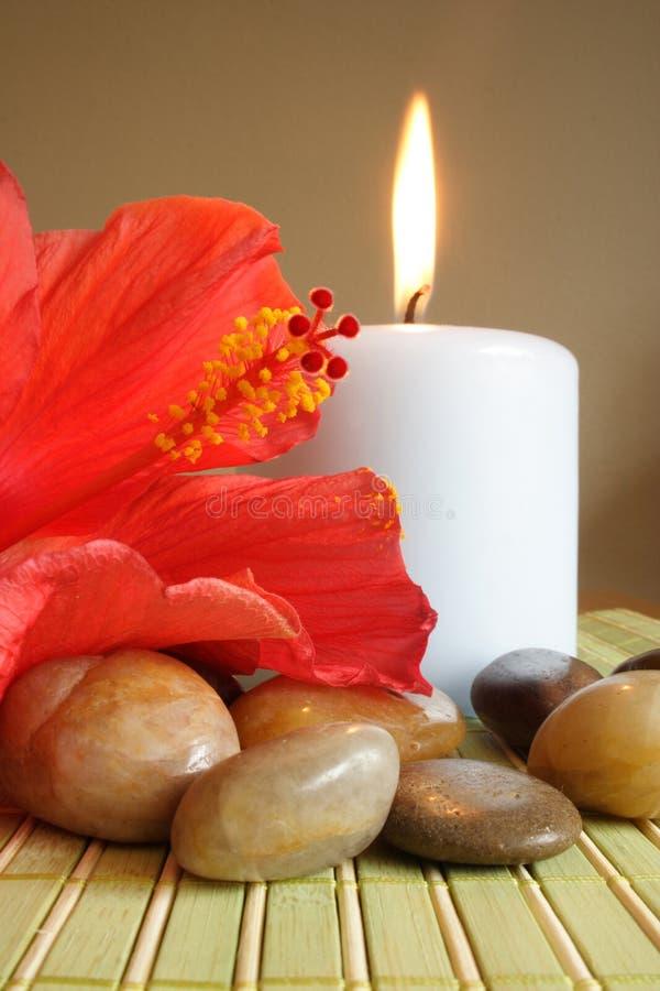 aromatheraphy obrazy stock