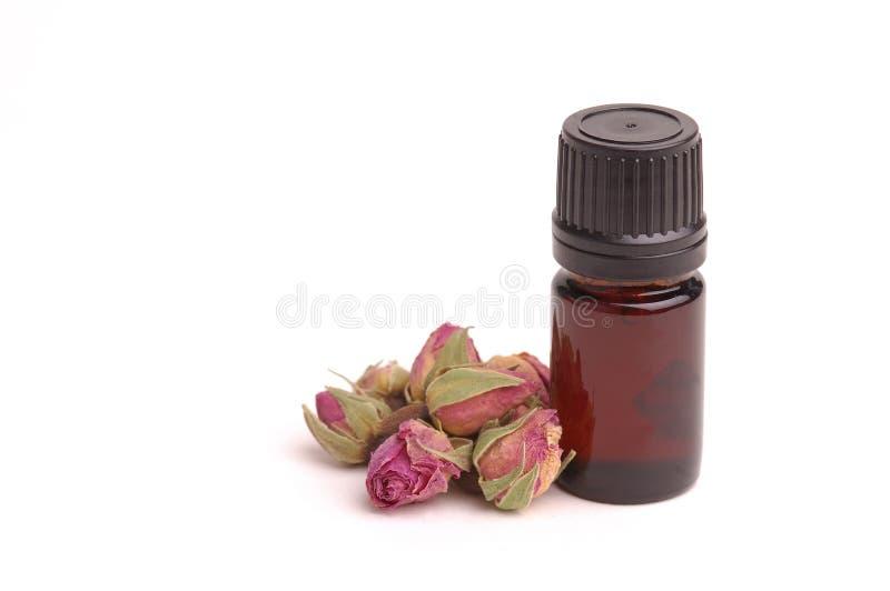 aromatherapy上升了 库存图片