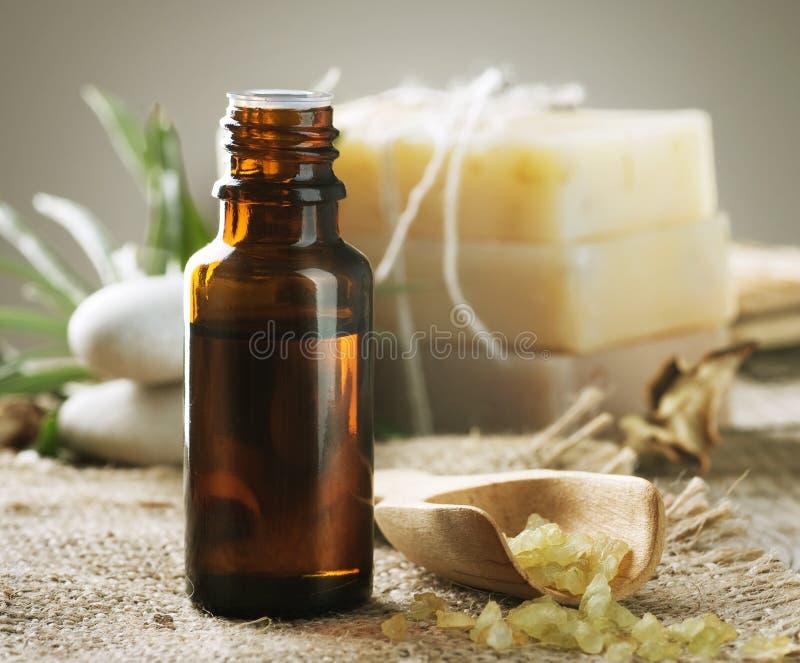 aromatherapy精华 免版税图库摄影