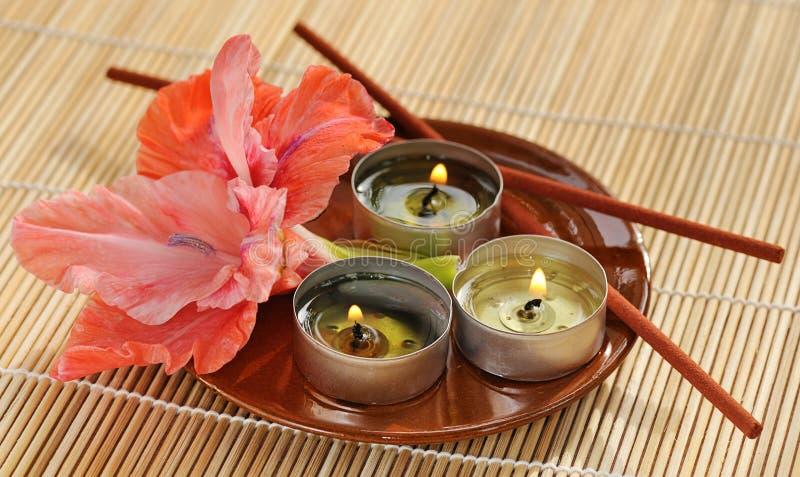aromatherapy zdjęcie royalty free