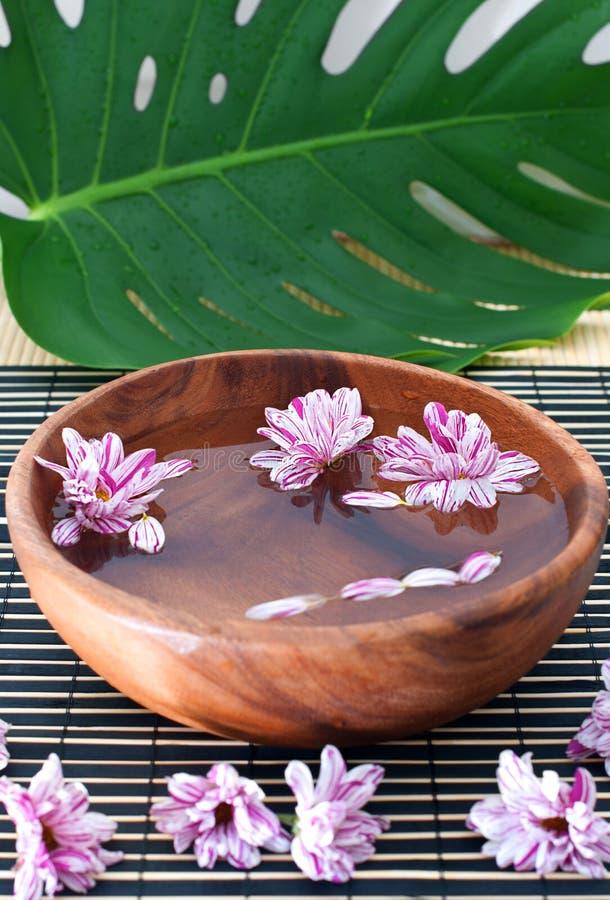 Aromatherapy. fotografia stock libera da diritti