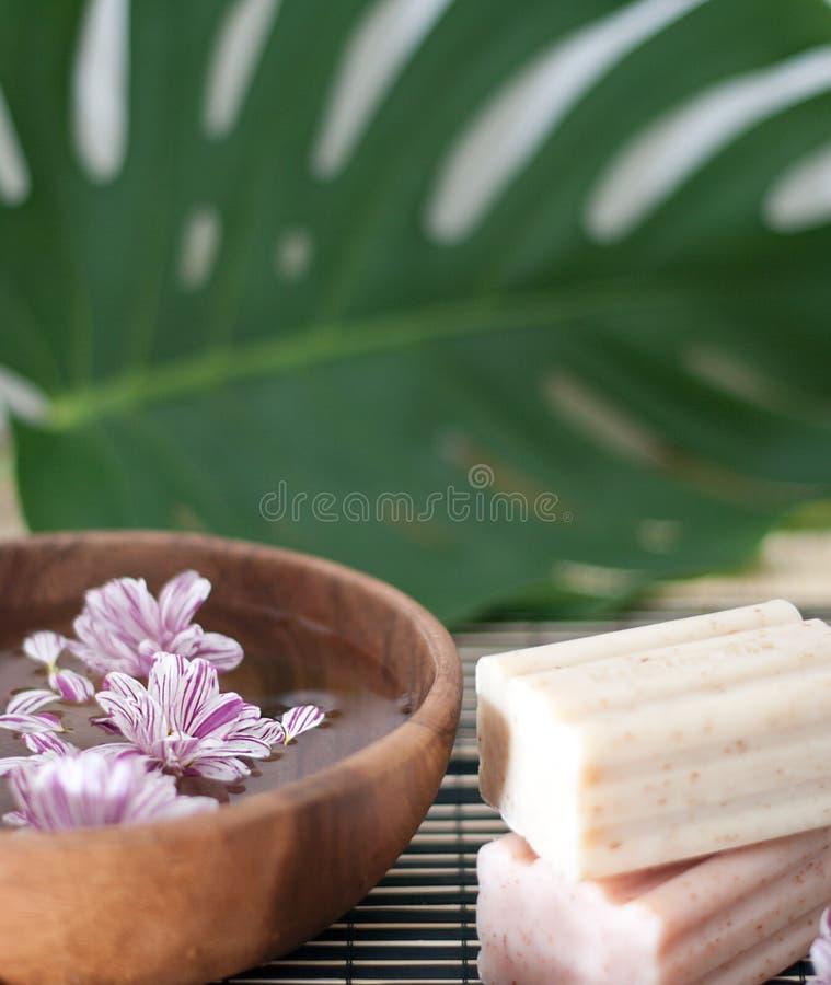 Aromatherapy. fotografia stock
