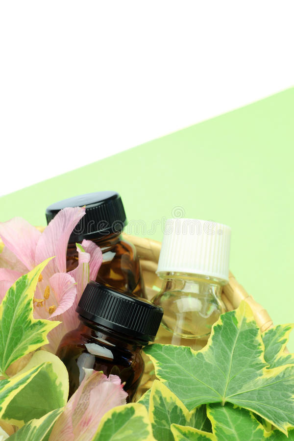 Download Aromatherapy stock image. Image of plant, aromatherapy - 23058317