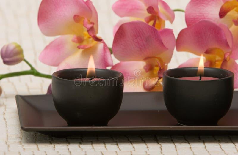 aromatherapy obraz stock