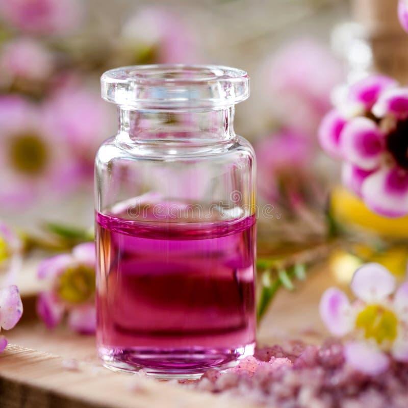 Aromatherapy royalty-vrije stock afbeeldingen