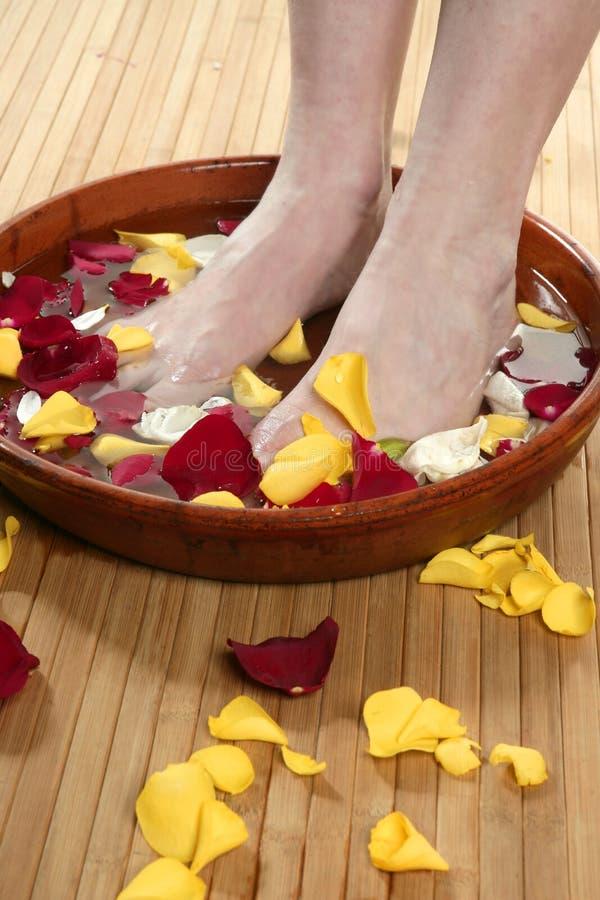 Aromatherapy, baño de los pies de las flores, pétalo color de rosa foto de archivo libre de regalías