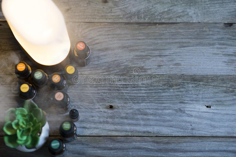 Aromatherapy background with electric essential oils aroma diffuser, oil bottles and natural green plant on the left side of rusti stock image