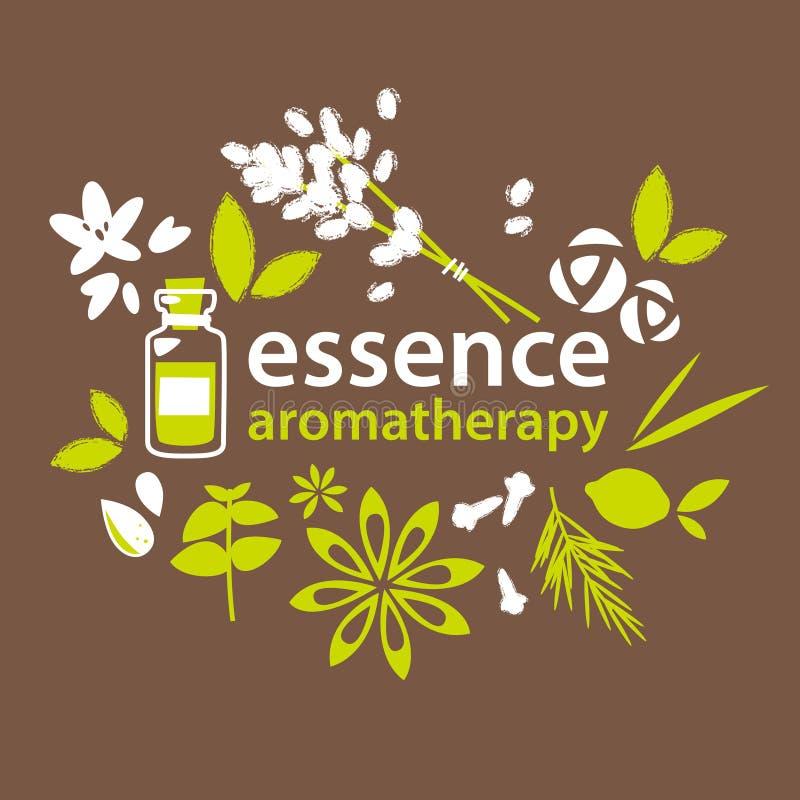 Aromatherapy, blommor och växter royaltyfri illustrationer
