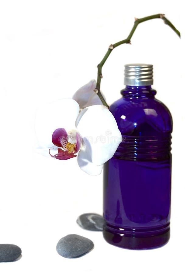 Aromatherapy IV fotografia de stock