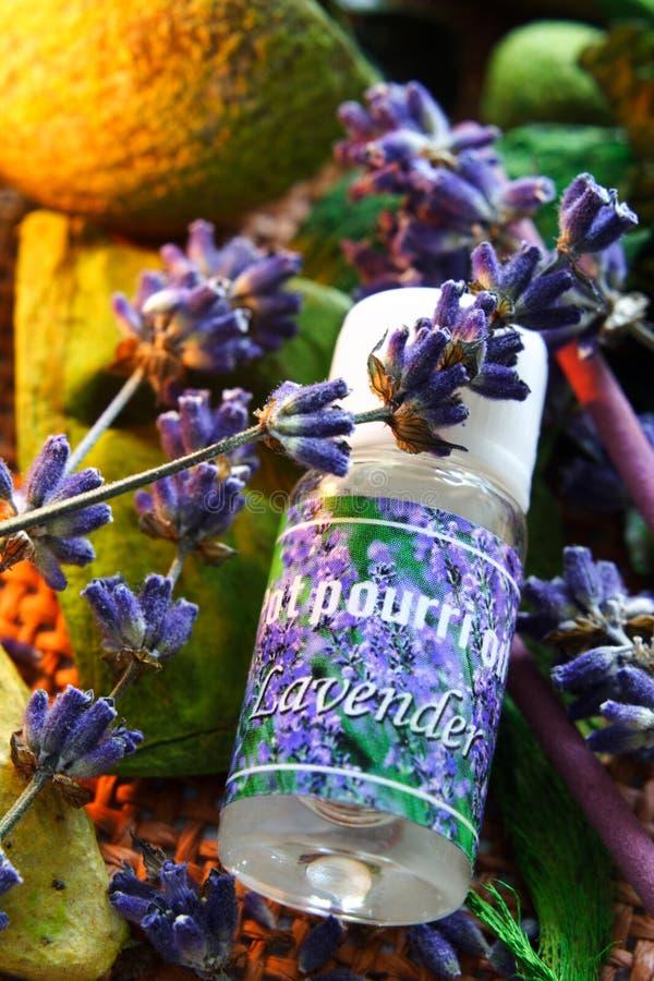 aromatherapy lavendelolja fotografering för bildbyråer