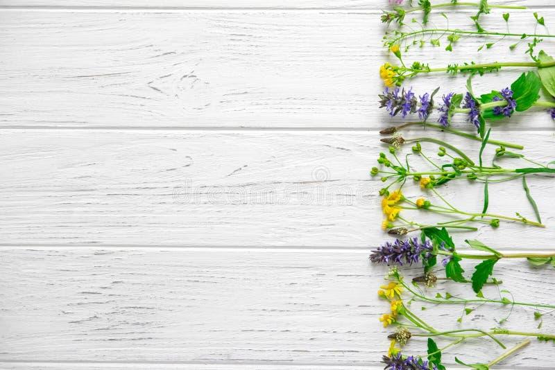 Aromatherapy- och sommarvildblommor Nya aromer av blommor Ram för text med lösa blommor på en träbakgrund Sikt fr?n fotografering för bildbyråer