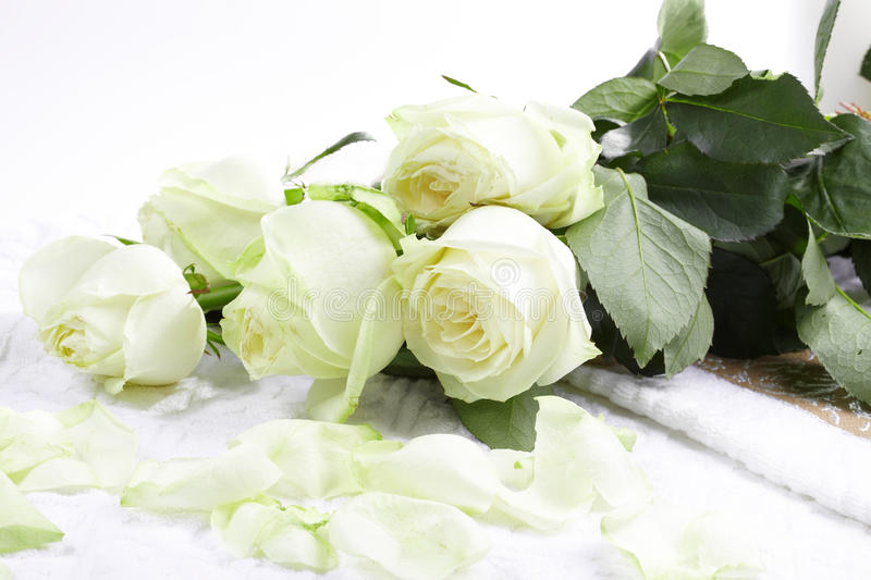 Download Aromatherapy with roses stock photo. Image of aromatherapy - 15344332