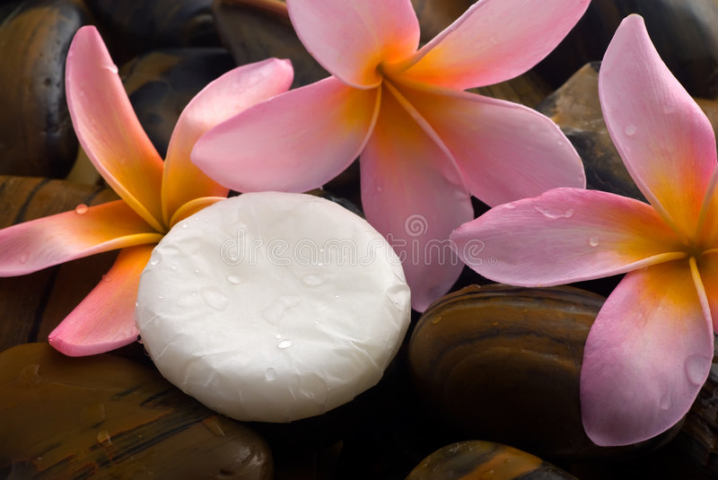 Download Aromatherapy And Spa Relaxation Stock Image - Image: 4607293