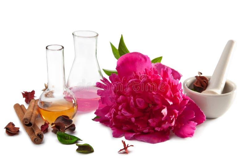 Aromatherapy trennte lizenzfreie stockfotos