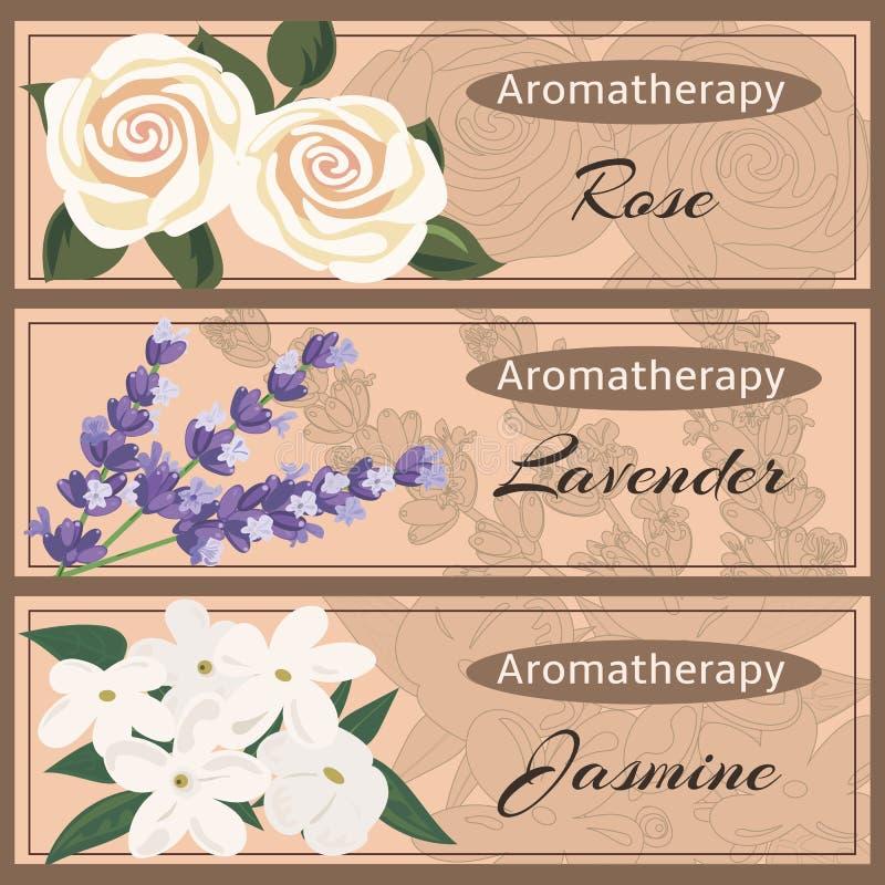 Aromatherapy vastgestelde inzameling royalty-vrije illustratie