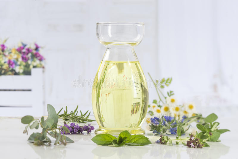 Aromatherapy Verse groene installatie en bloemen botle van etherische olie stock afbeeldingen