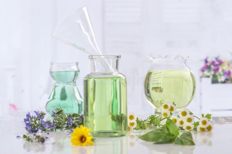 Aromatherapy Verse groene installatie en bloemen botle van etherische olie stock afbeelding