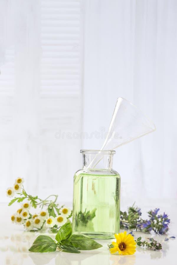 Aromatherapy Verse groene installatie en bloemen botle van etherische olie royalty-vrije stock foto