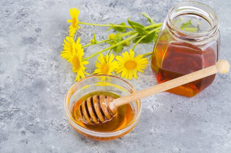 Aromatic flower honey, wild flowers on gray background. Studio Photo stock photo