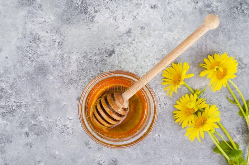 Aromatic flower honey, wild flowers on gray background. Studio Photo royalty free stock photo