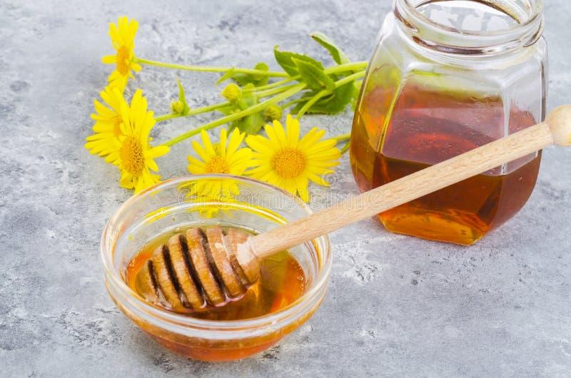 Aromatic flower honey, wild flowers on gray background. Studio Photo stock photos