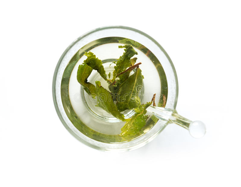 Aromatic green tea brewed in cup, topview stock photo