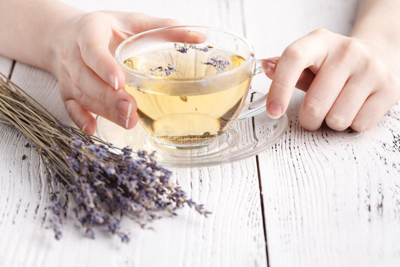 Aromatic herbal tea in glass cup holding female hands royalty free stock image